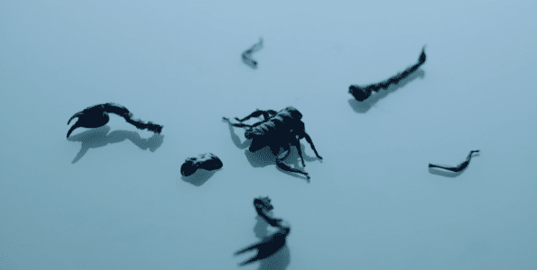 scorpion-drake